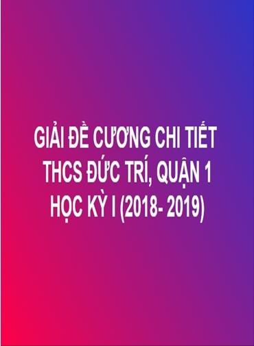 GIẢI CHI TIẾT ĐỀ CƯƠNG TOÁN HỌC KỲ I - THCS ĐỨC TRÍ, QUẬN 1 (NĂM HỌC: 2018- 2019)